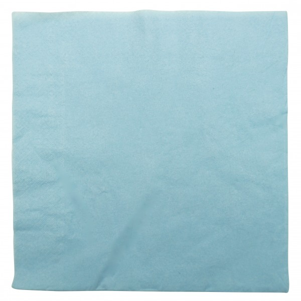 Light Blue 2 Ply Paper Dinner Napkins