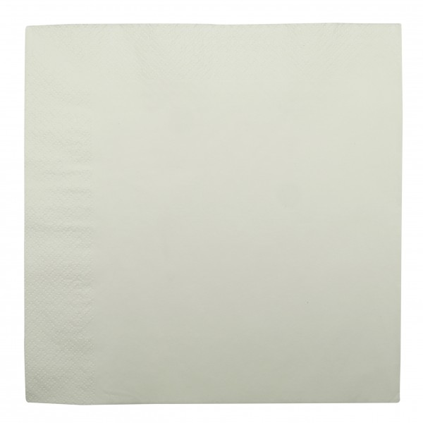 White 2 Ply Paper Dinner Napkins