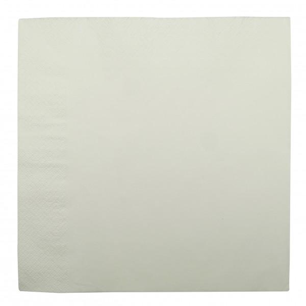 White 2Ply Paper Dinner Napkins
