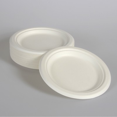 White Plant Fibre Plates