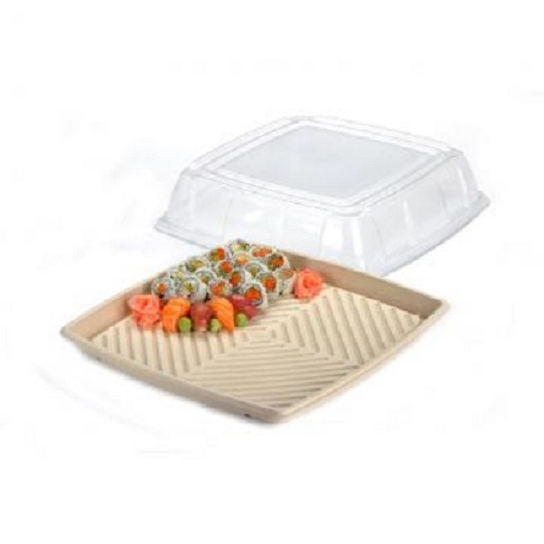 Kraft Plant Fibre and Recyclable Plastic Eco Friendly Platters